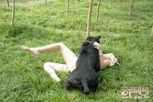人与动物交配图片