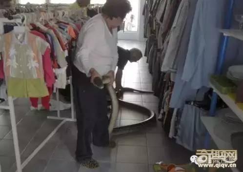 真的好恐怖!在这里上厕所一定要先冲水...慎入!!