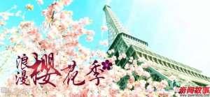 樱花都开好了 史上最牛巴黎樱花游赏地图