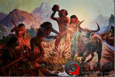 北京猿人的体质特征 北京猿人化石是怎么被发现的